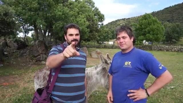 MrHicks46: Camisetas y Pegatinas Solidarias!